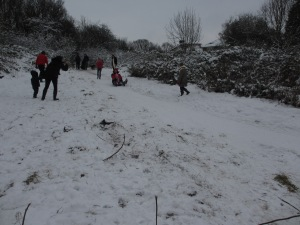 Sledging fun in Westley Vale