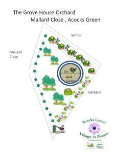 Thanks to Michael for this draft design of the Community Orchard.