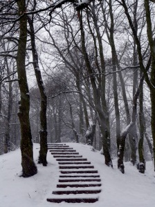 Snow Steps Westley Vale, Acocks Green