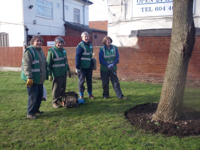 An enjoyable morning planting bulbs in the sunshine. 2nd Feb.