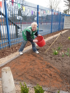 sowing wild flower seeds for a natural meadow effect