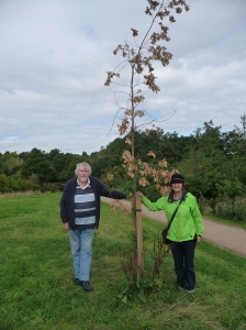 Pat Tarry & Ged Hughes with one of the 'saved' trees.