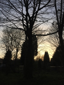dusk on Westley Vale