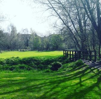 Springtime in Westley Vale