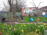 Springtime tidying in the Orchard