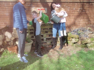Family watering our bug hotel
