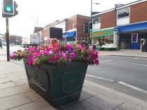 One of the 22 colourful planters