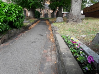 violas and cyclamen planted along the pathway.