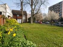 Woodcock Lane - Spring flowers