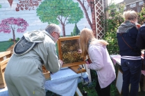 A chance to see bees close up