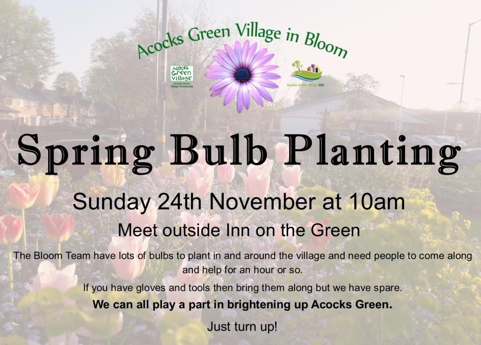 bulb planting Nov19