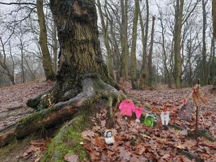 Elves Washing Line?